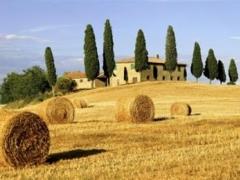 Toskana s Firencom